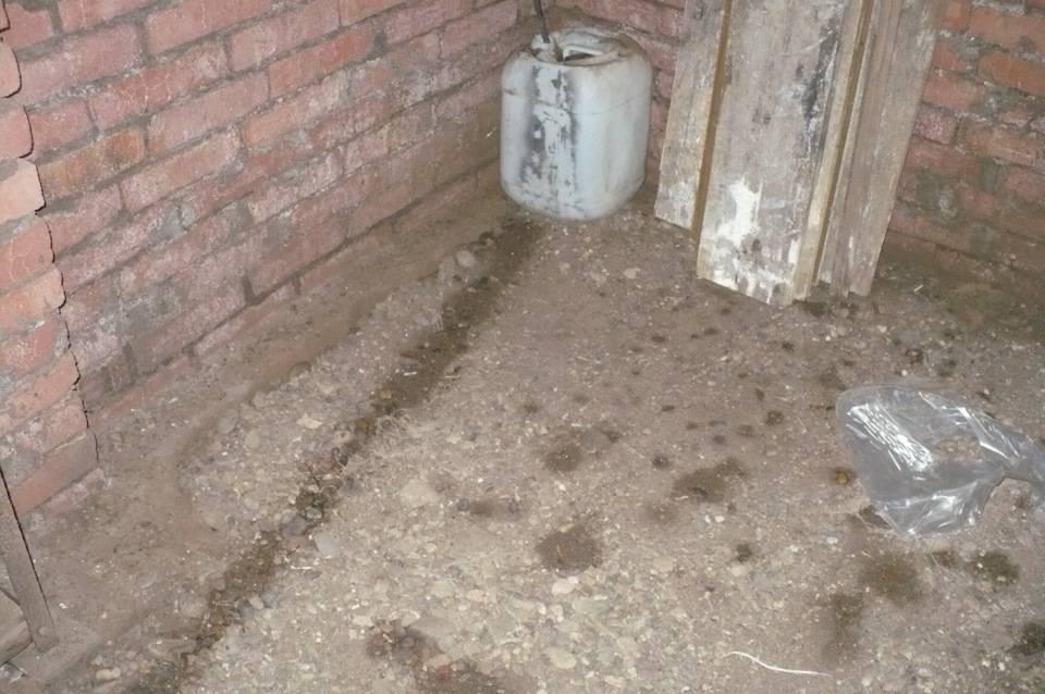 Сырость в погребе гаража: как избавиться + что делать + почему появилась | погреб-подвал