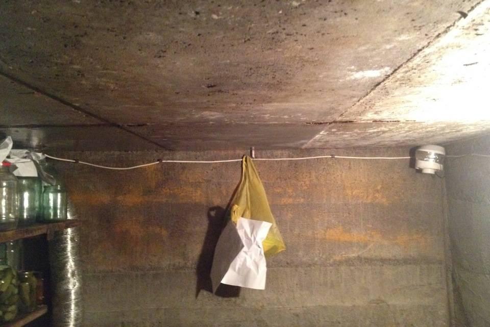 Почему в гараже появляется конденсат, чем это вредно, и как решить проблему?