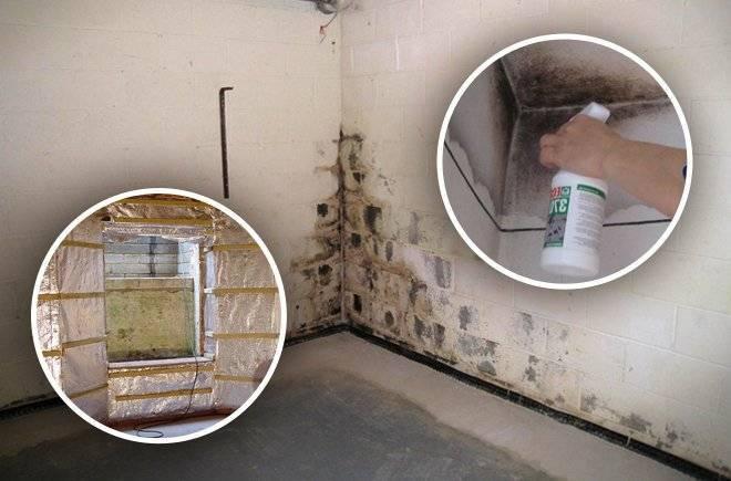 Конденсат в гараже (сырость, влажность): как избавиться?