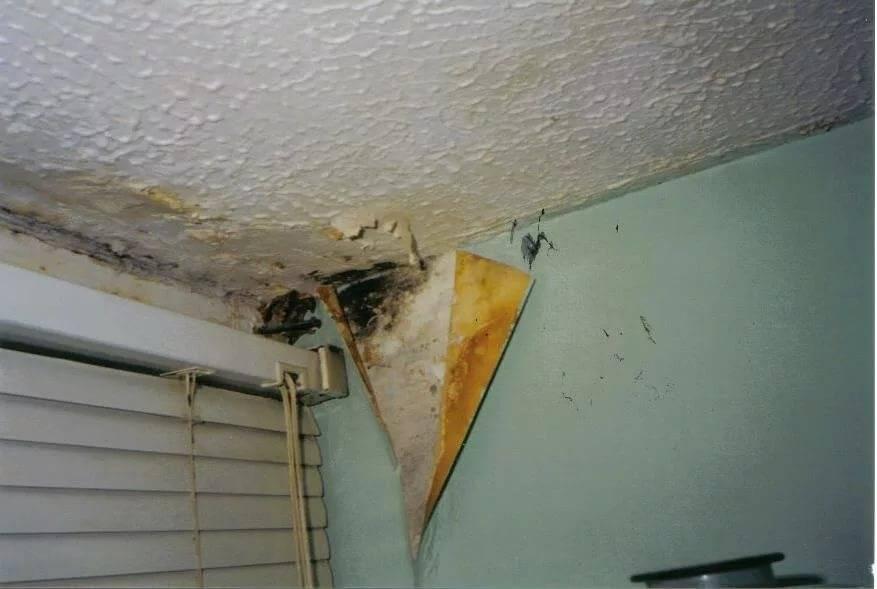 Как избавиться от сырости в гараже: что делать, чтобы просушить и устранить конденсат